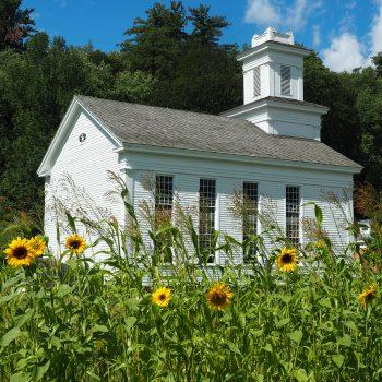Farmers Museum Sunflower Church